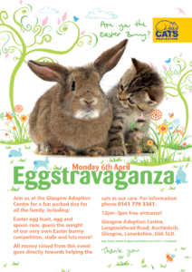 glasgow-cats-protection-easter-eggstravaganza