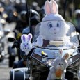The Yorkhill Easter Egg Run is back on Sunday the 27th March for it's new route from Glasgow Green to the Glasgow Children's Hospital in the South Side. Expect to have your heart warmed!