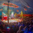 Zippo's Circus is back with a brand new show: OMG! And action packed extravaganza, at Loch Lomond Shores and in Kirkintilloch this August!